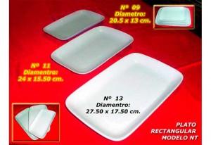 plato-rectangular-modelo-nt